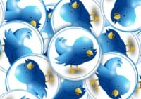 plugins twitter wordpress