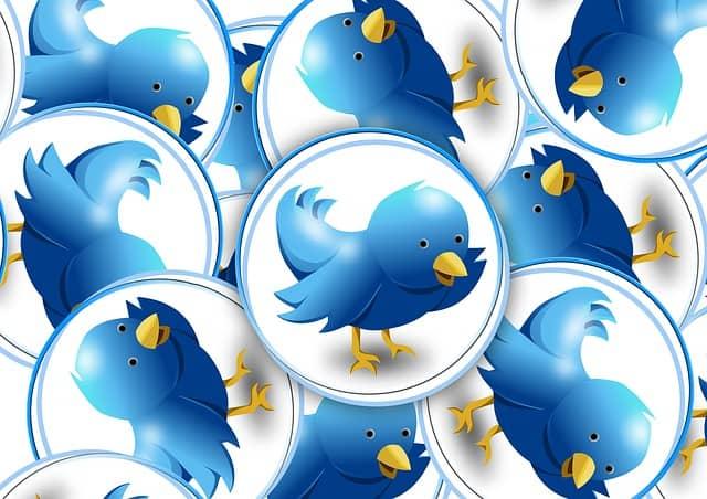 plugins twitter wordpress