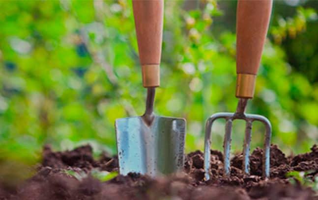 pagina web jardineria